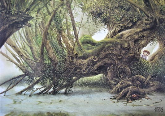 Old Man Willow Tolkien Lord of the Rings art print by John Howe